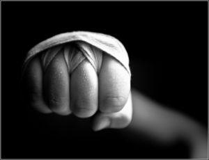 shadow boxe punching ball