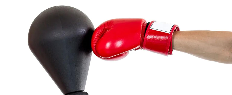 OKBY Speed Bag Sac de Suspension Suspendu pour Balle de Boxe Gonflable Ballon de Poire MMA Punching Equipment Exercise Equipment
